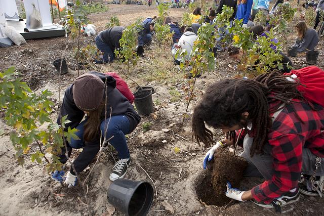 Super Bowl Tree Planting in The Rockaways