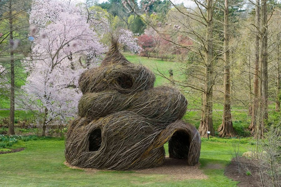 LIVING TREE HOUSE