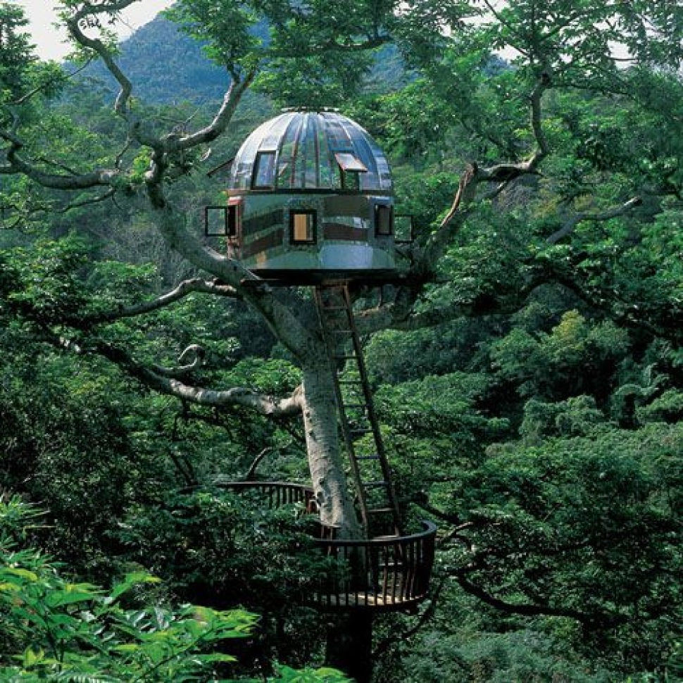 20 AMAZING TREEHOUSE DESIGNS