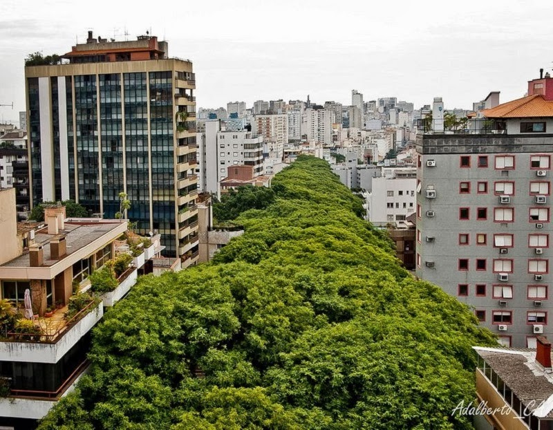 THE MOST BEAUTIFUL STREET IN THE WORLD (PHOTOS)