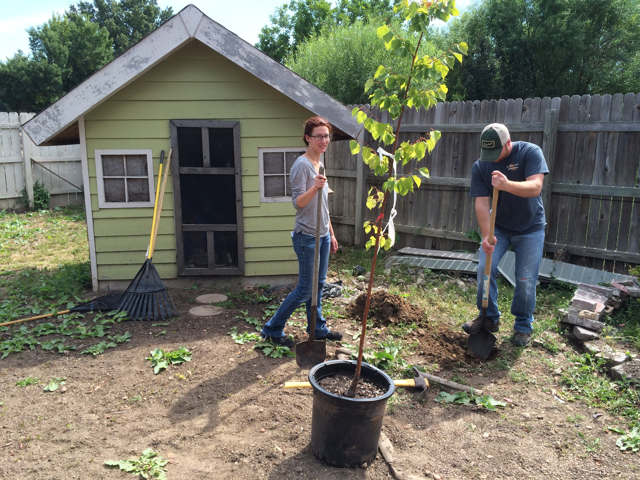 1ST ANNIVERSARY PLANTING IN EVANS, CO (photos)
