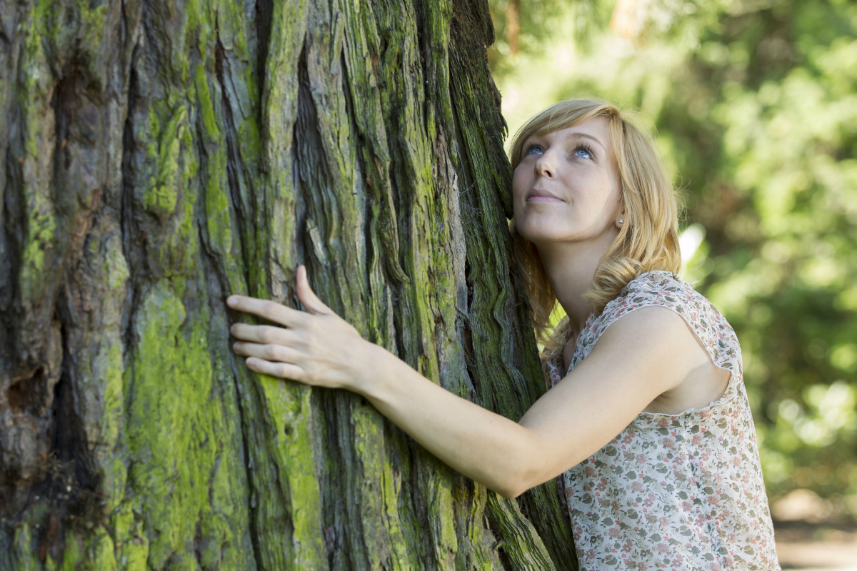 HUGGING TREES IS GOOD FOR YOUR HEALTH (article)