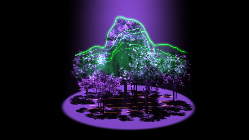 3D MAPPING FORESTS WITH SPACE LASERS (article)