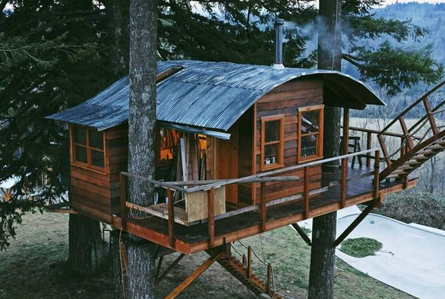 TREEHOUSE WITH SKATEPARK (photos)