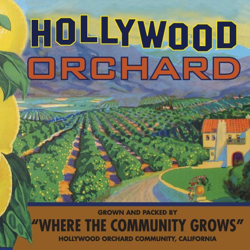 HOLLYWOOD ORCHARD