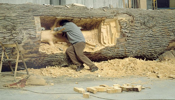 CARVING OUT SAPLINGS (photo essay)