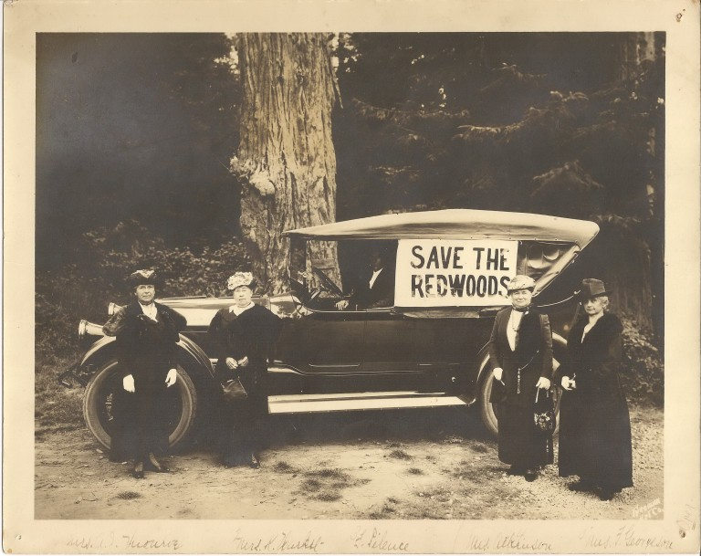 THE WOMEN WHO SAVED THE REDWOODS (article)