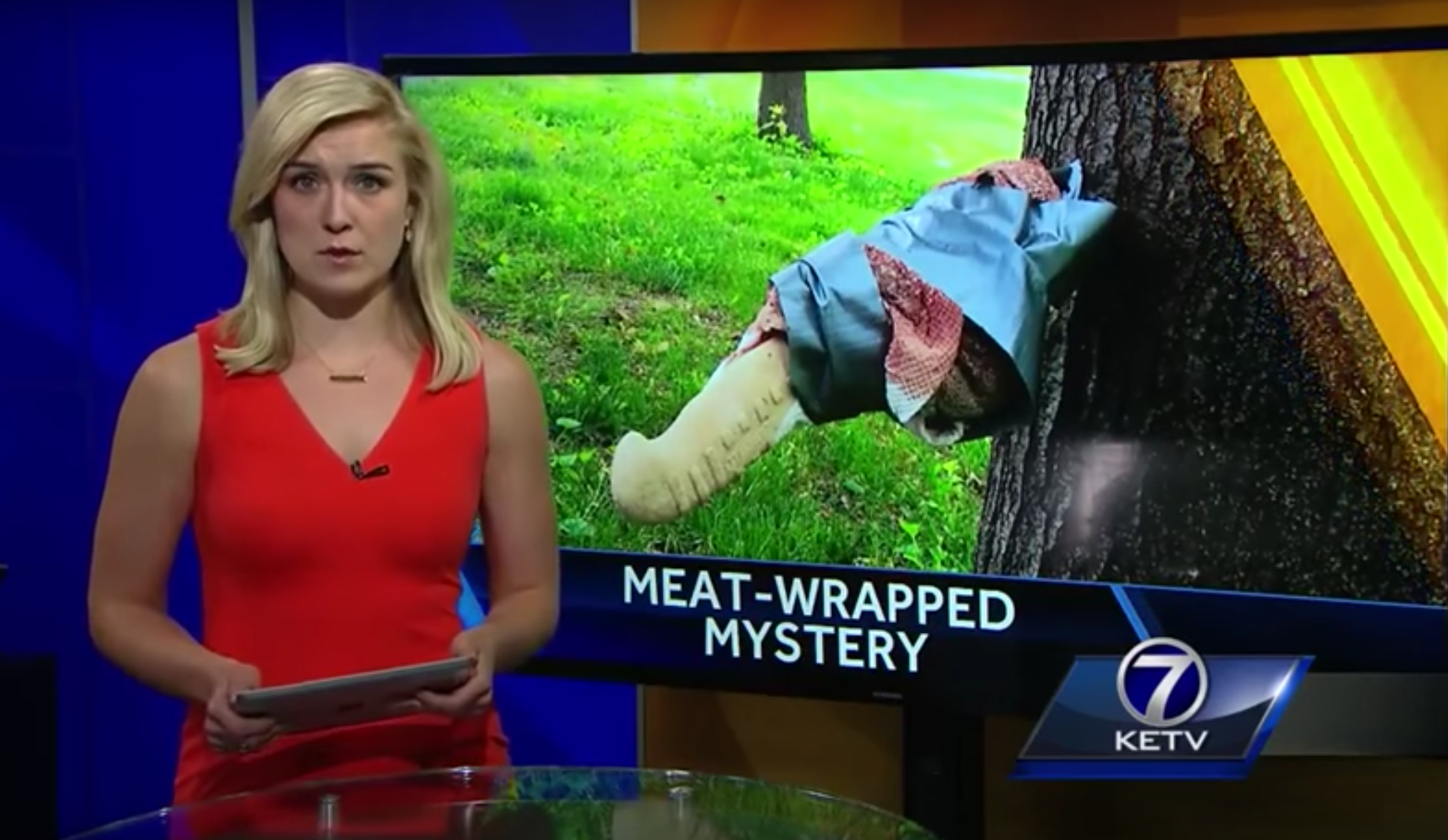 STABBING TREES WITH MEAT? (video)