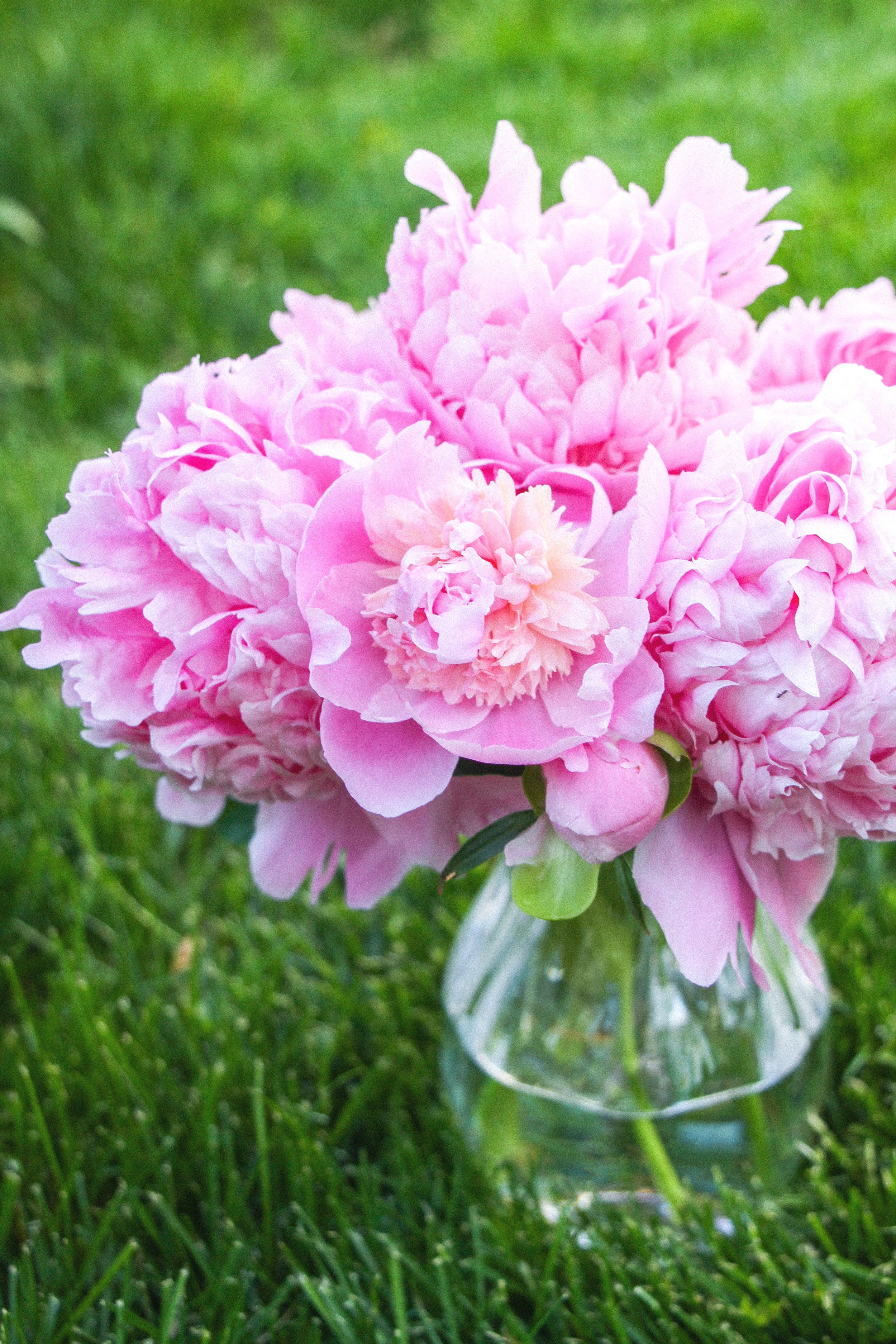 Letters Are Lovely | Peony Season