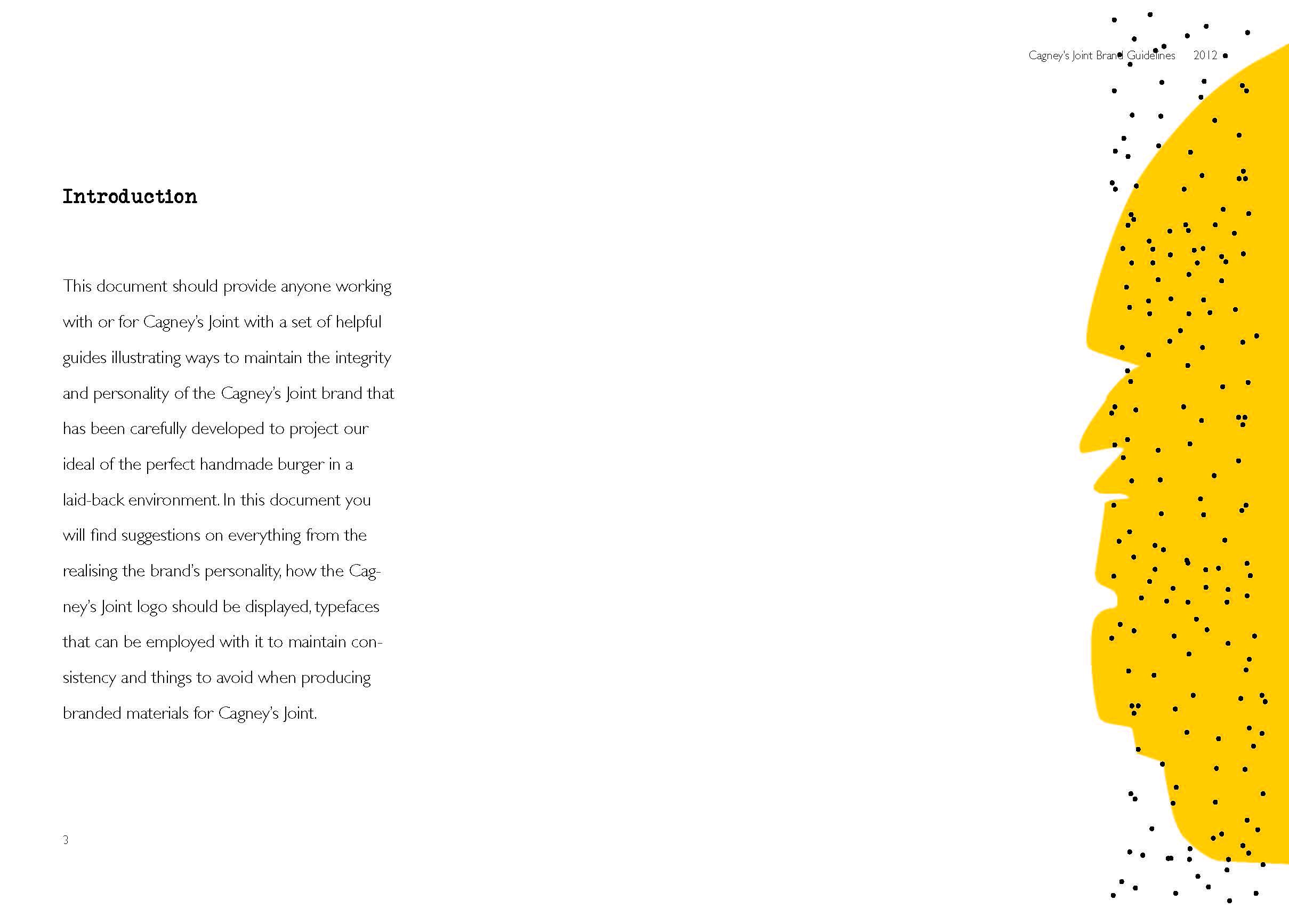 Brand Guideline P03