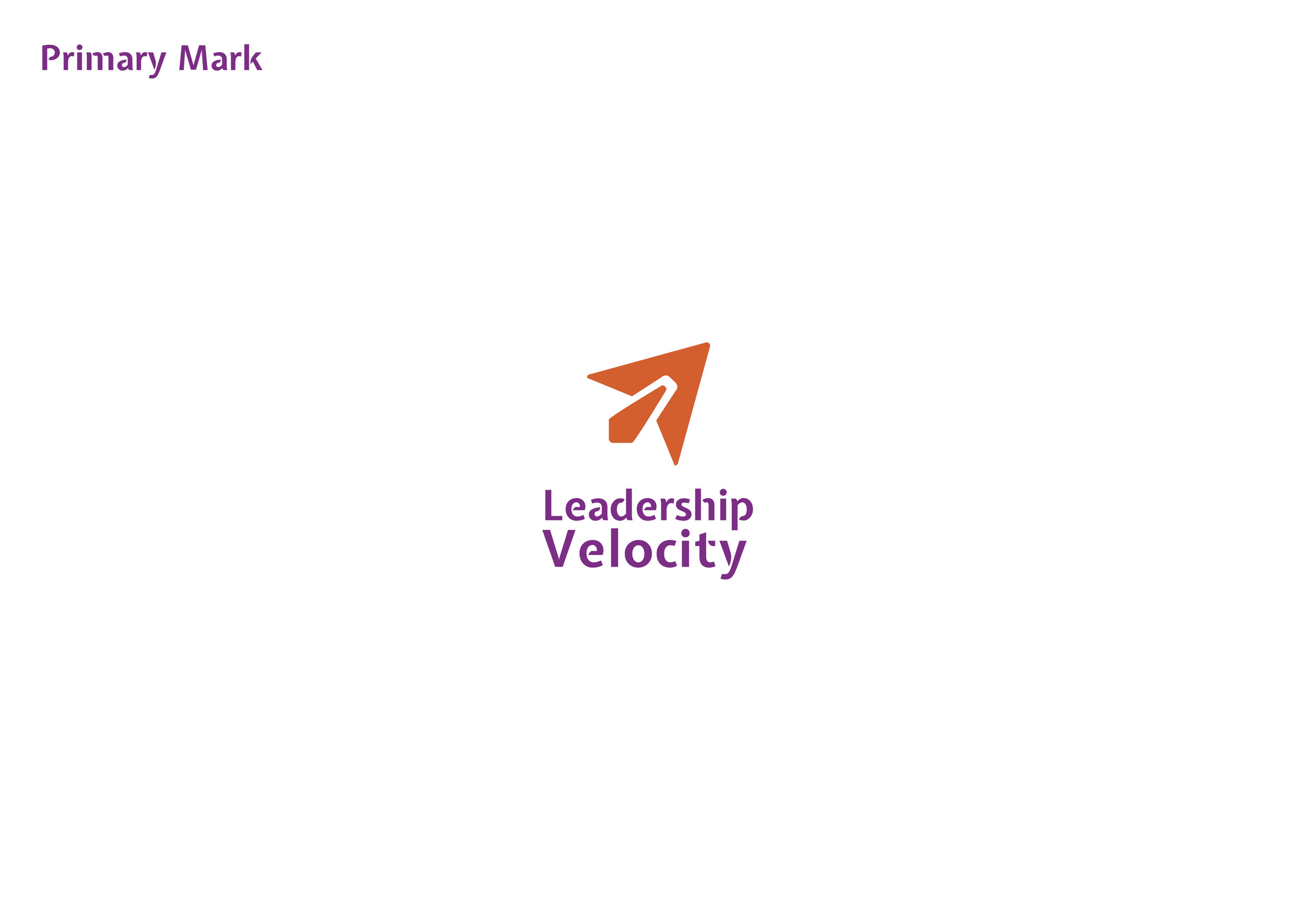 LeadershipVelocity_BrandIdentity_StyleGuide3.jpg