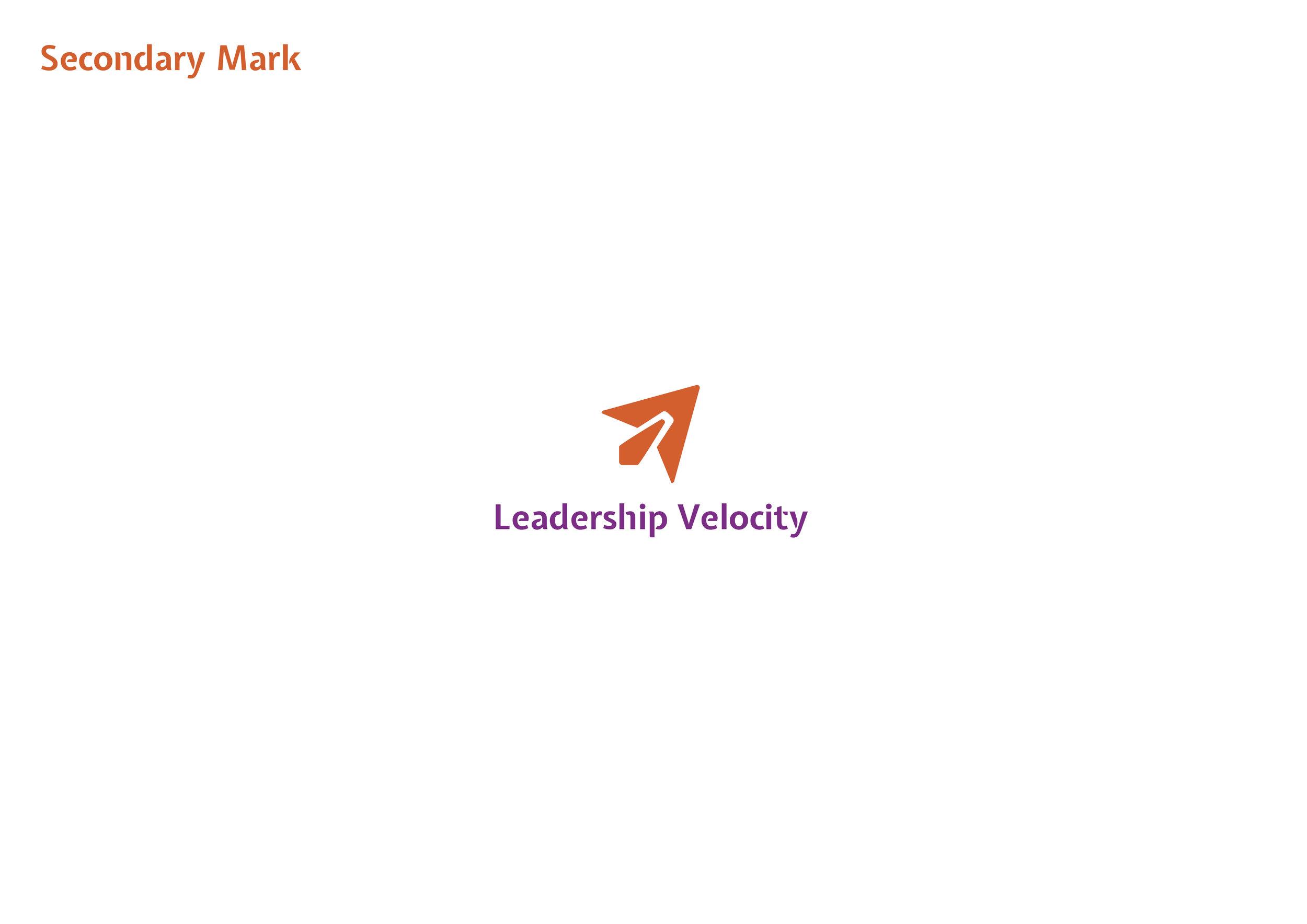 LeadershipVelocity_BrandIdentity_StyleGuide4.jpg