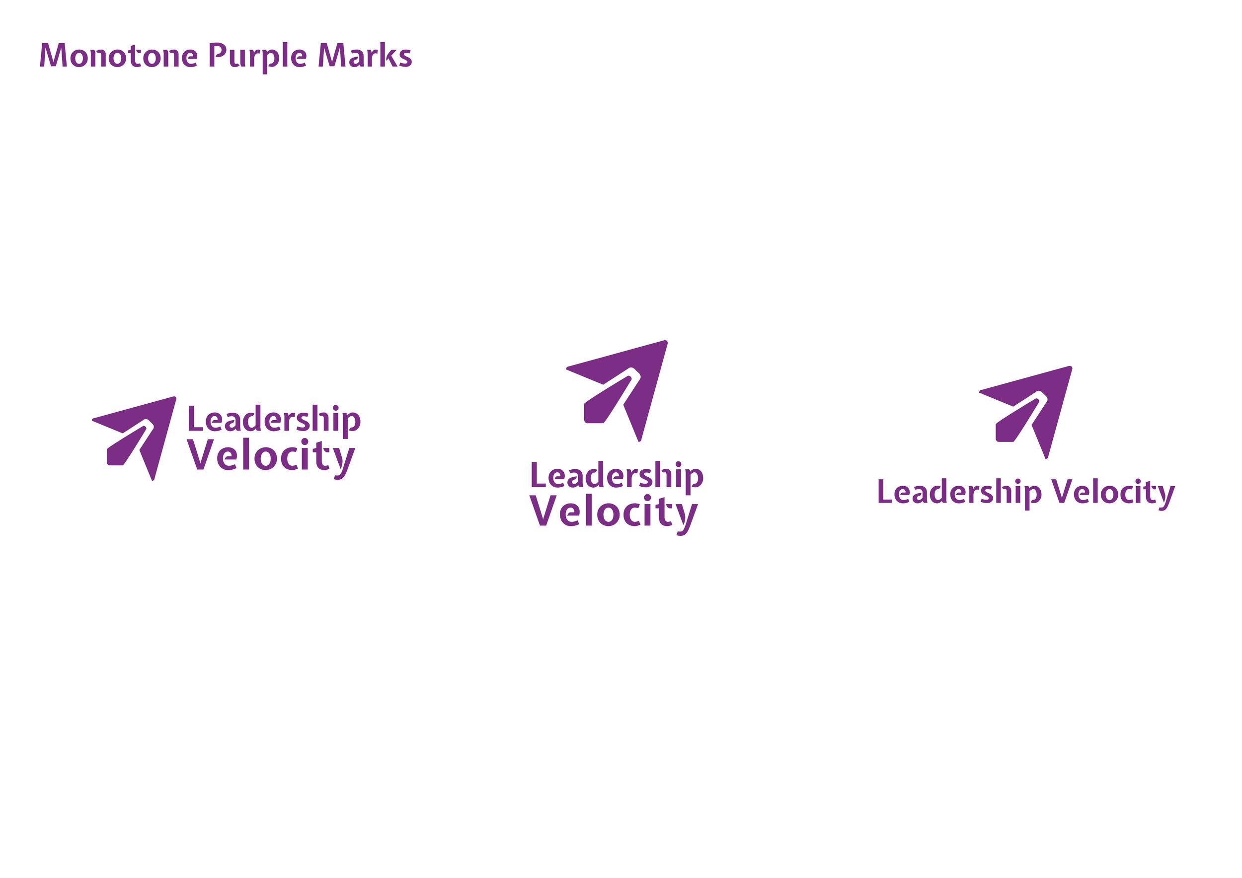 LeadershipVelocity_BrandIdentity_StyleGuide7.jpg