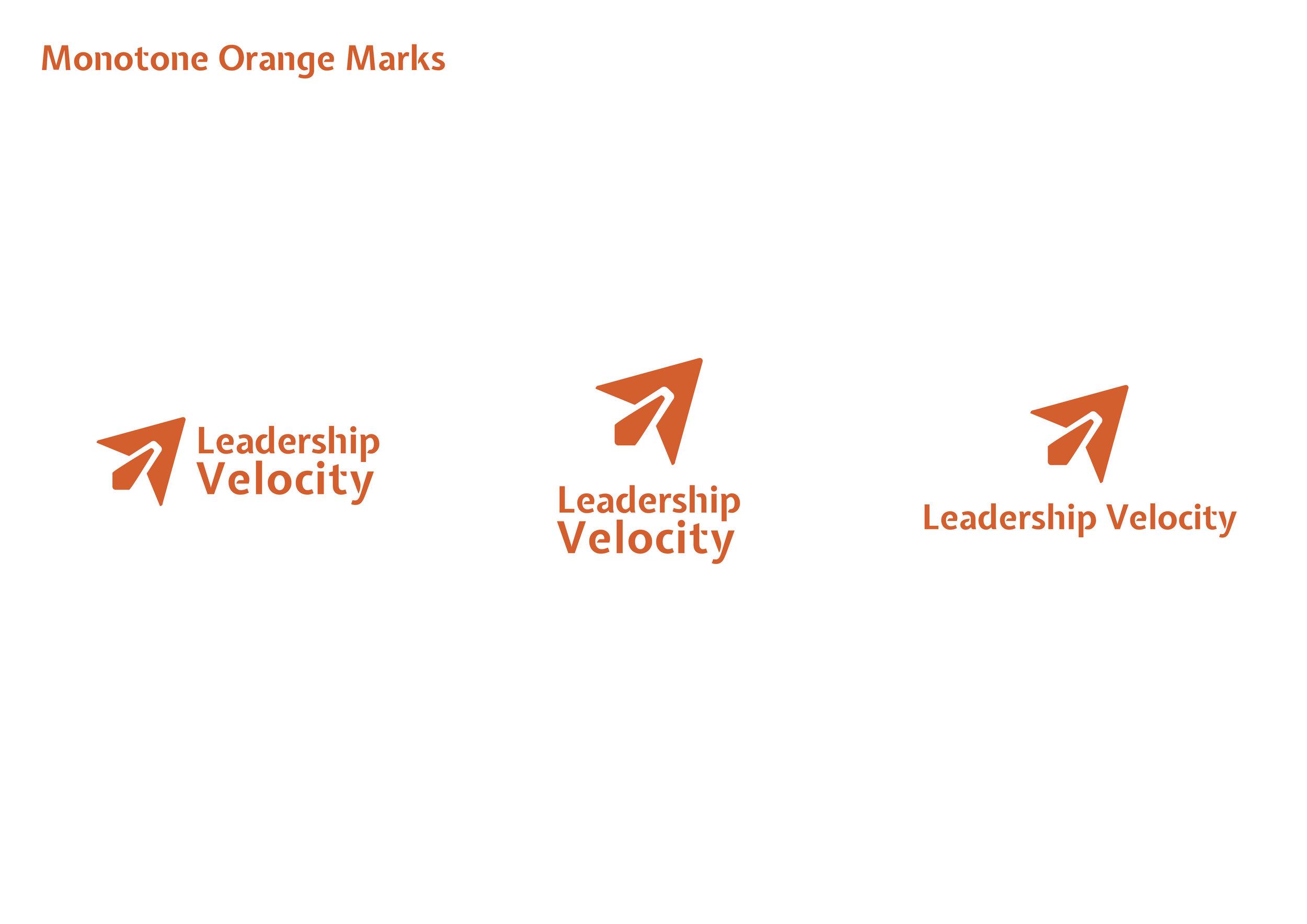 LeadershipVelocity_BrandIdentity_StyleGuide6.jpg