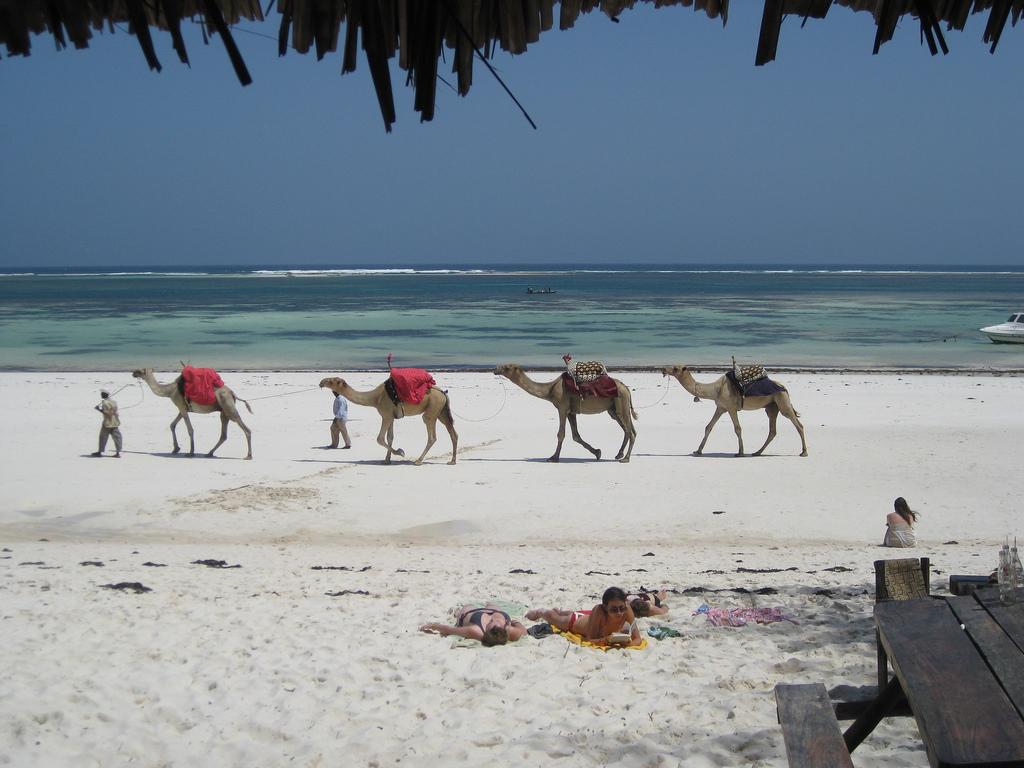 2007-04-07 - Kenya - Mombassa Beach from Hotel Dolphin.jpg