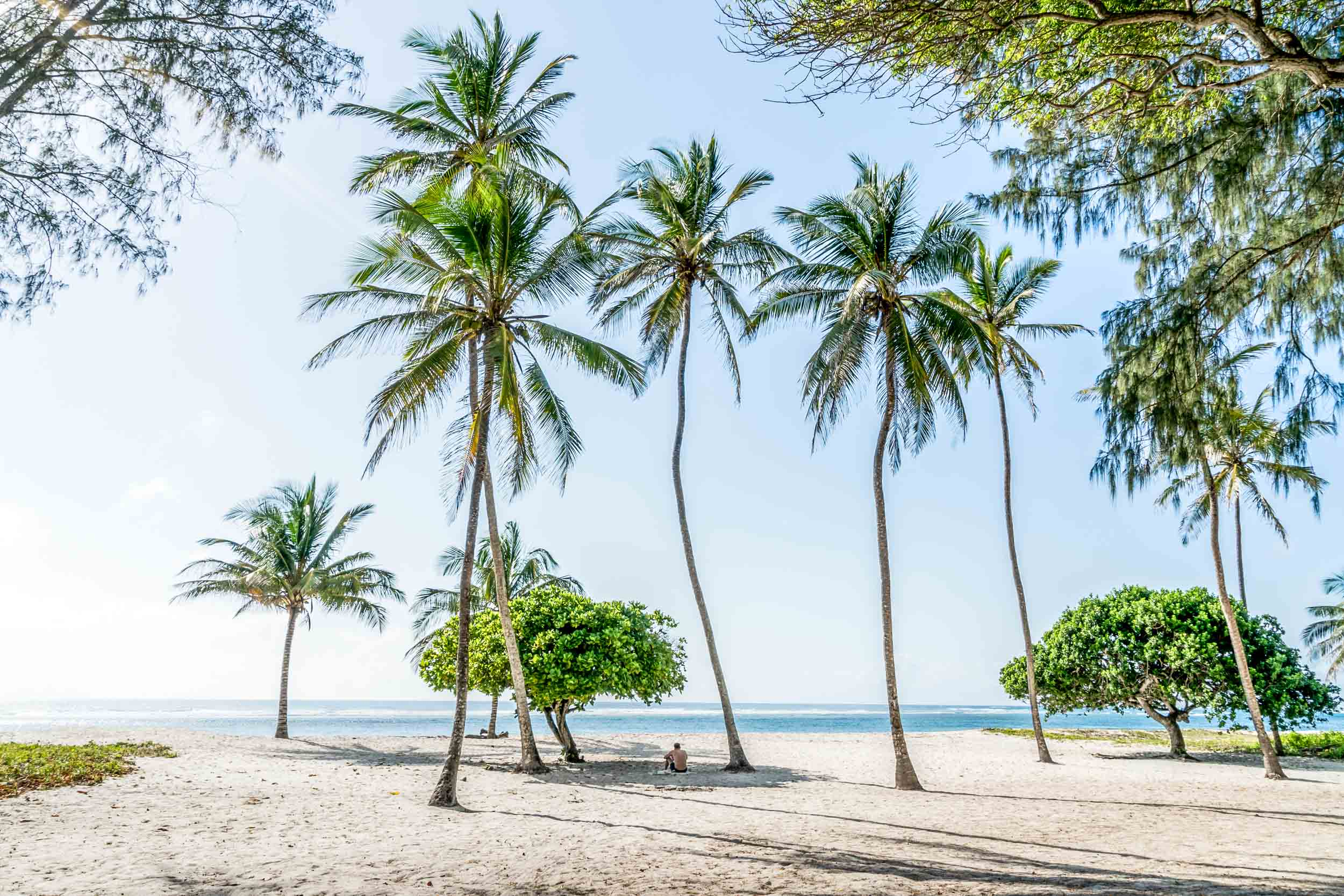Tiwi front yard Ohanesian  copy.jpg