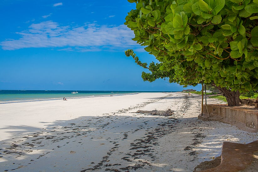 Beach - looking south.jpg