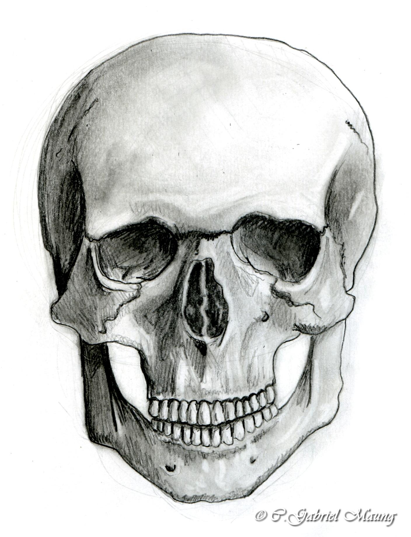 skullfront_big.jpg