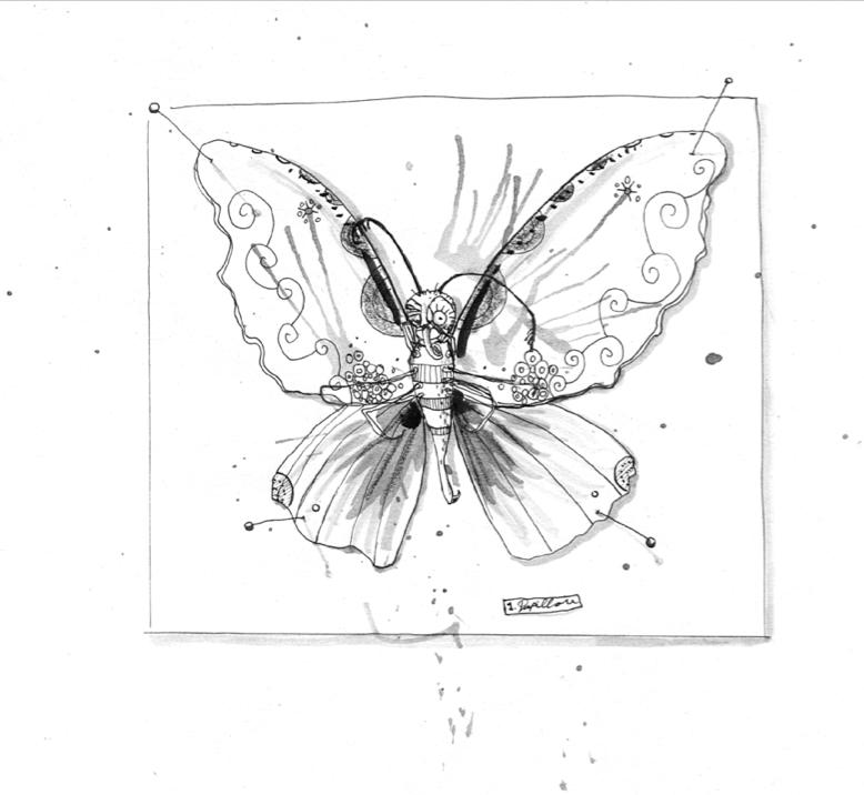 Papillon – Schmetterling en Francais