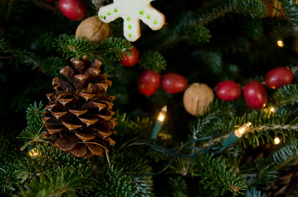 ChristmasArts_2013-3-2.jpg
