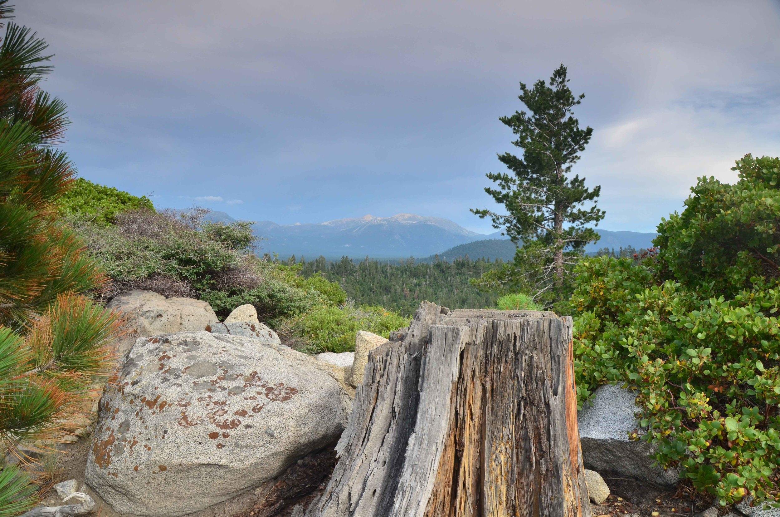 Lake_Tahoe_22.jpg