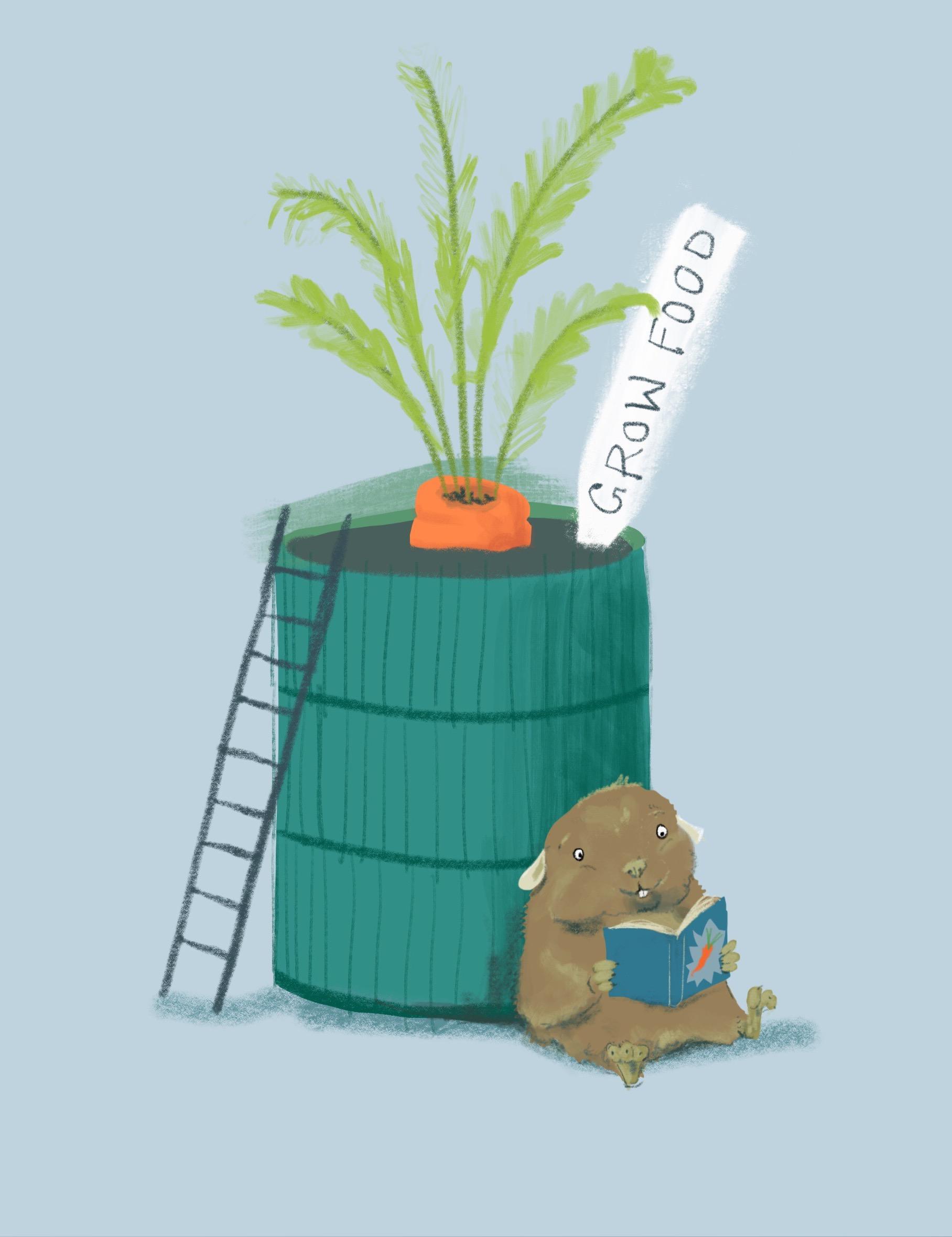 02_GrowYourOwnFood_How_to_Upcycle_Your_hamsterwheel_CC-BY-SA_JenniOttilieKeppler.jpeg