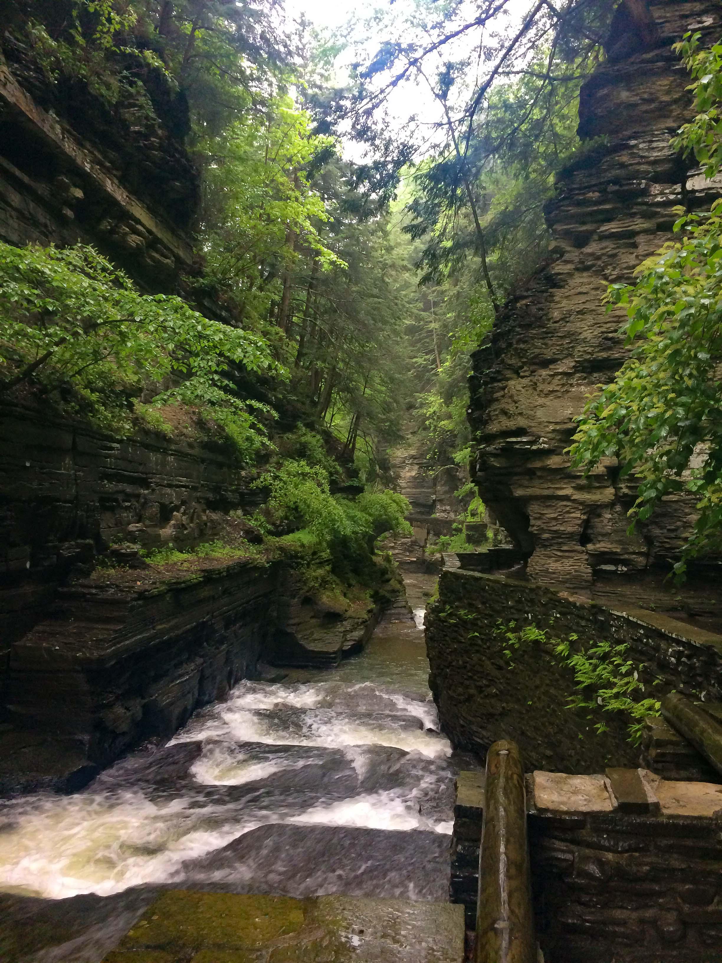 Ithaca_Part 01_2017_05_WaterfallHike_Brendan001.jpg