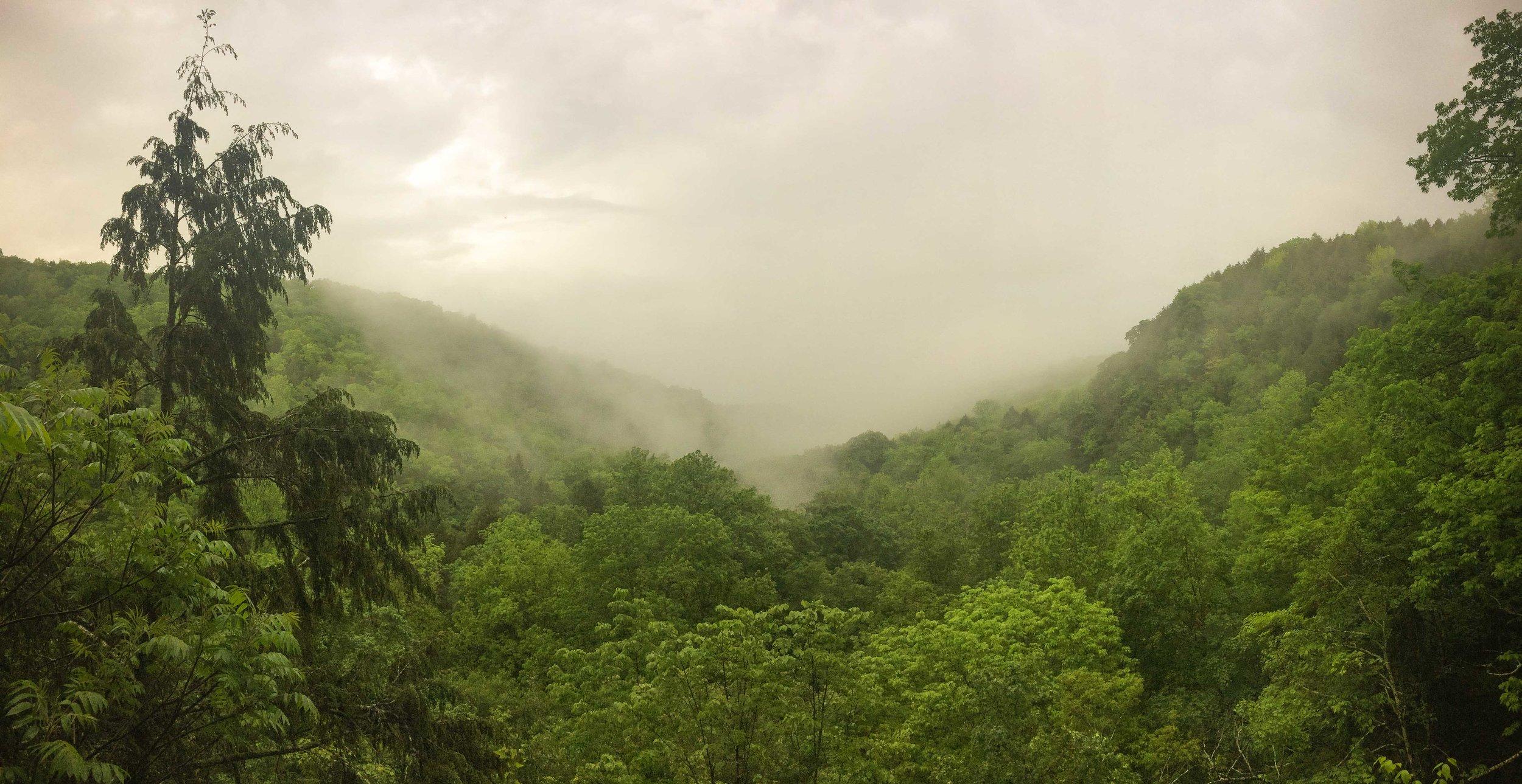 Ithaca_Part 01_2017_05_WaterfallHike_Brendan005.jpg