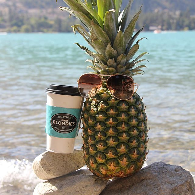 Suns out pineapples out! 🍍 pineapple Joe rolled out of bed and got his morning coffee in hand ☕️