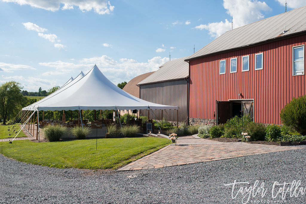 tented-wedding-ringoes-nj