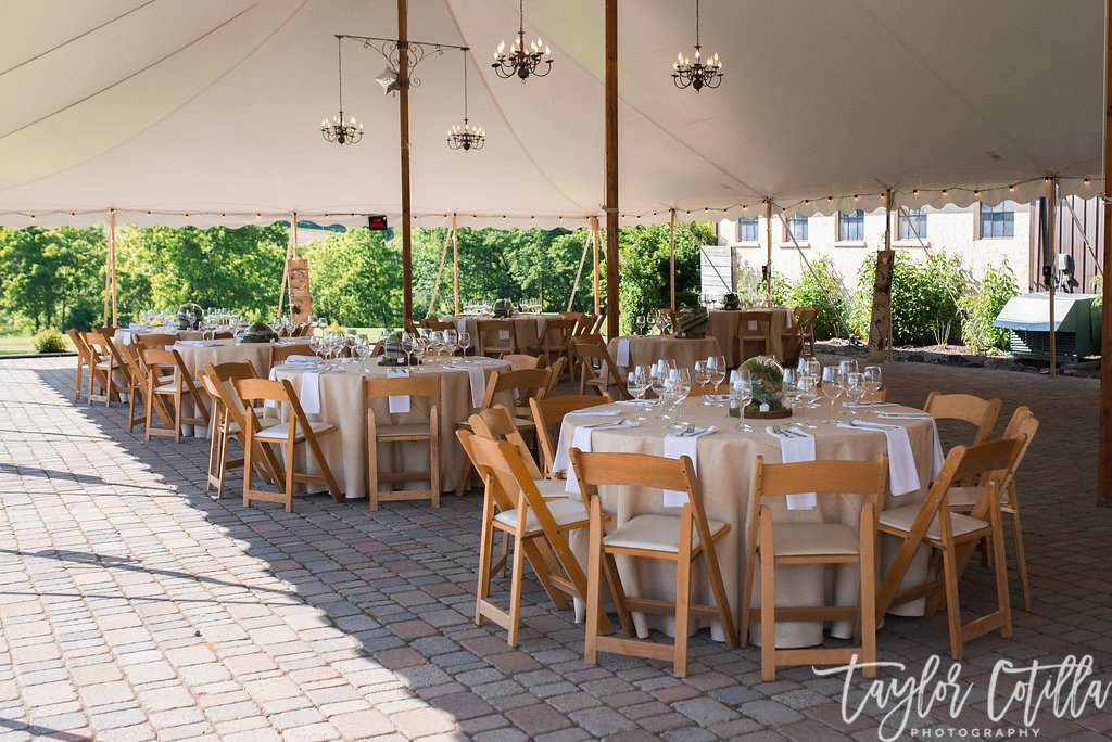 tent-wedding-succulent-centerpieces