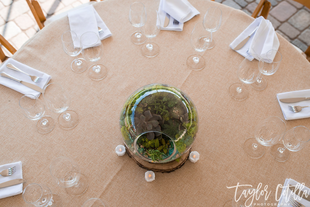 succulent-centerpieces-terrariam-vineayrd-wedding