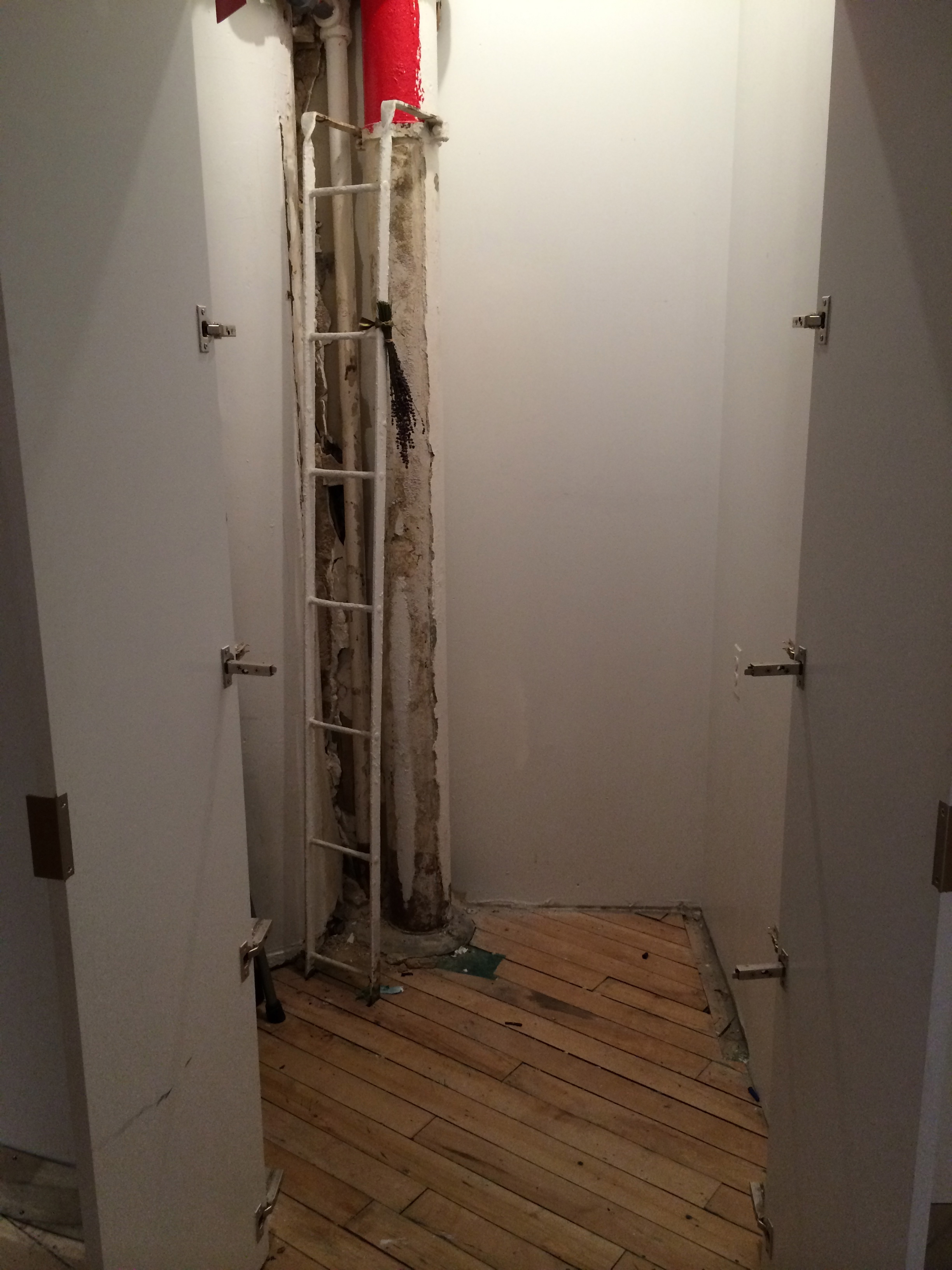 storage closet prior to revamp