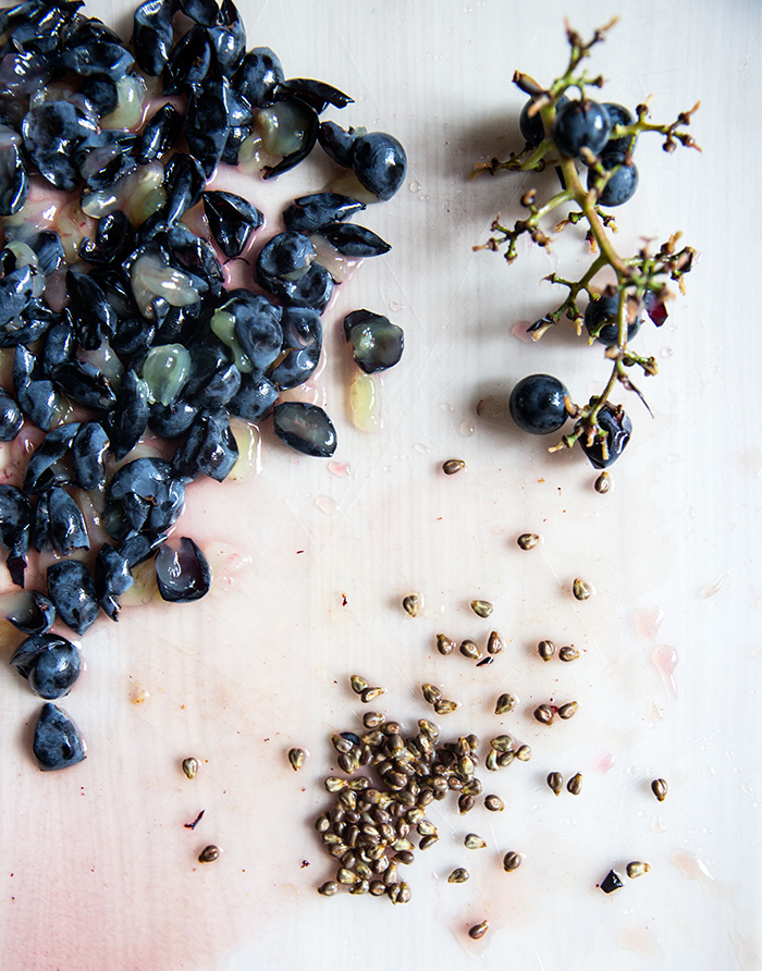 concord grape sauté | shallot + herb chickpea flatbread (socca)