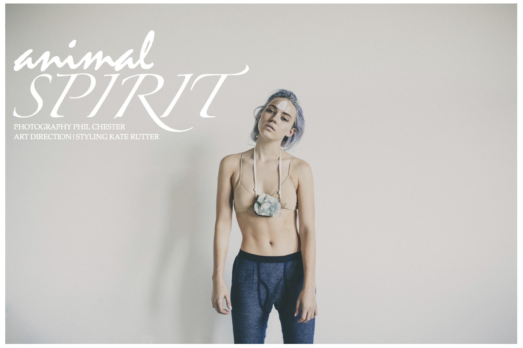 Animal Spirit Cover.jpg