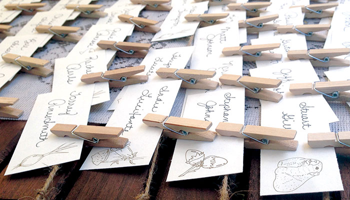 illustration-name-cards-ivy-ink.jpg