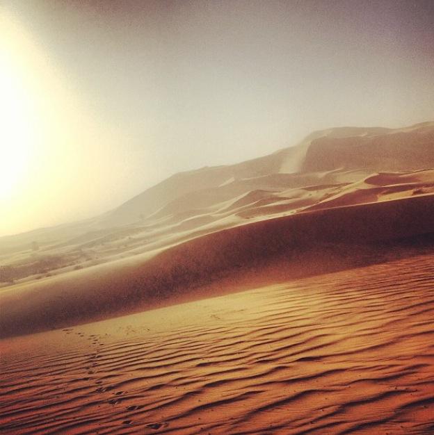 Morning in the Sahara