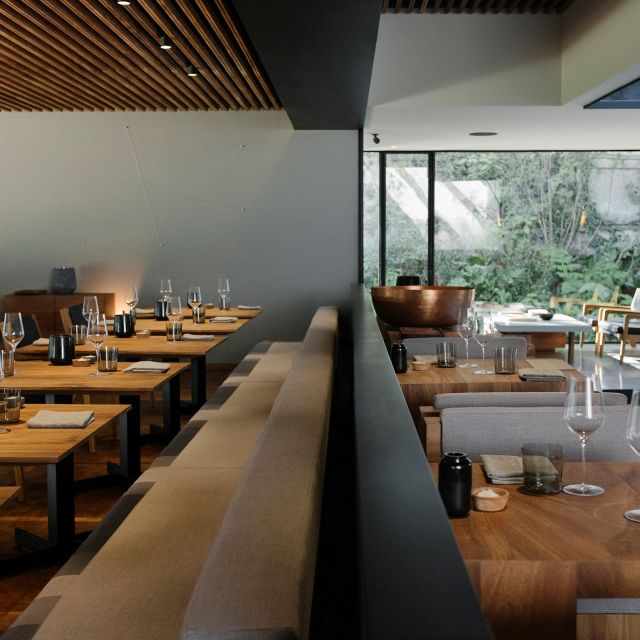 Pujol. The non-budget friendly but beautiful 13th best restaurant in the world. Mexico City, Mexico. image courtesy of opentable.com