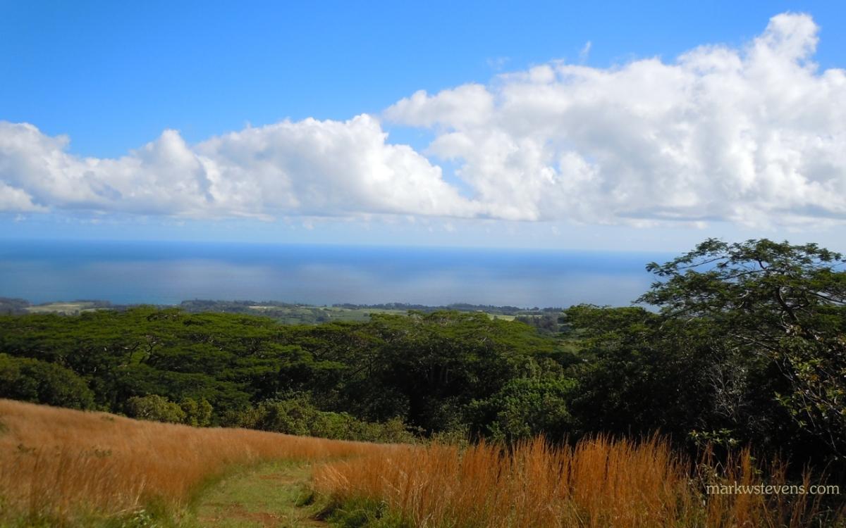 Beautiful Landscape in Hawi