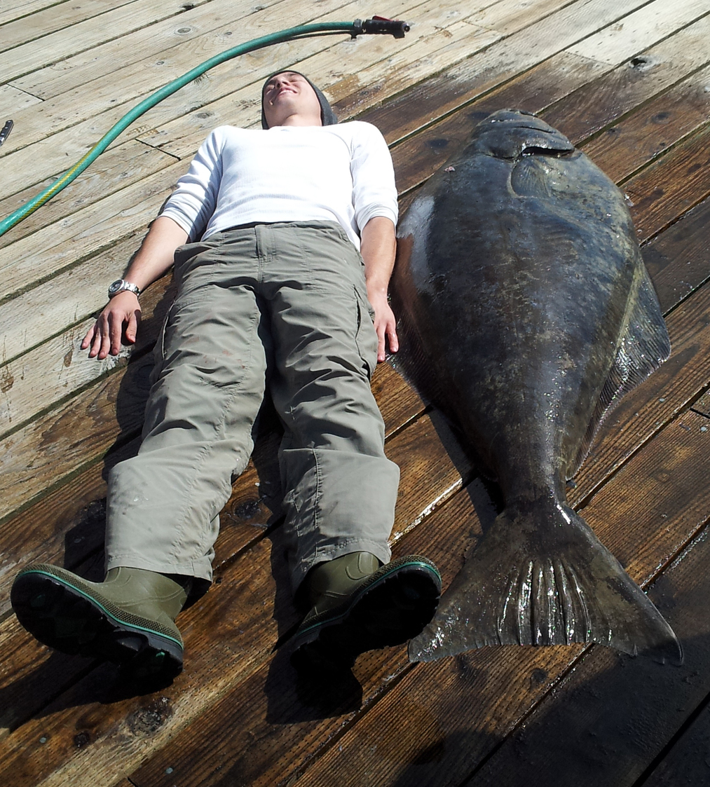 Our friends next door at Baranof Fishing Excursions caught this huge halibut.