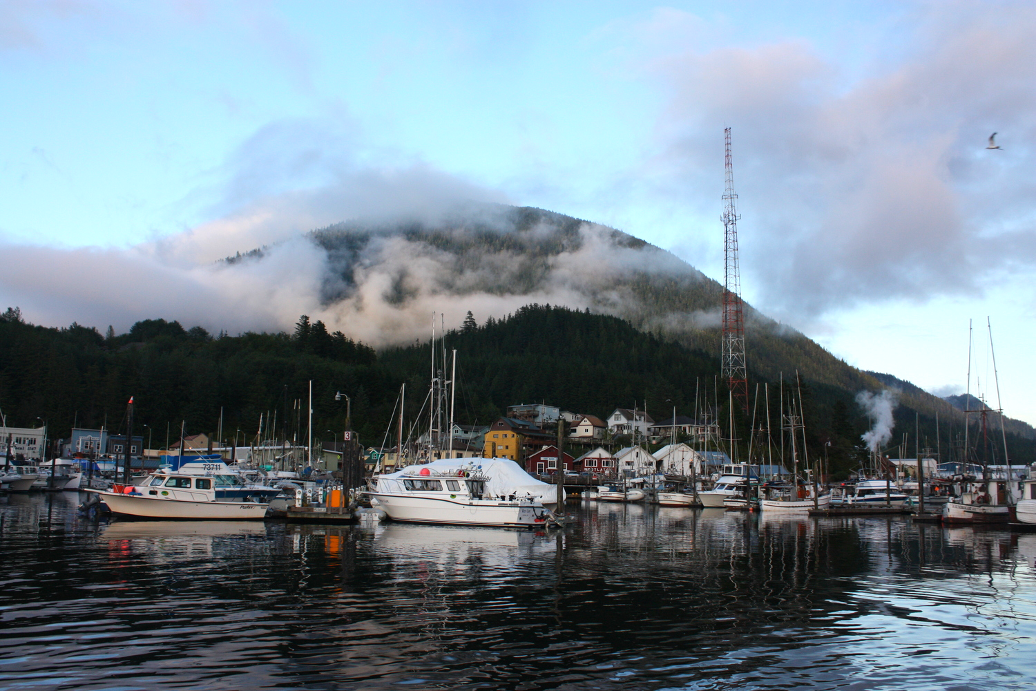 The view from our floating office in downtown Ketchikan.