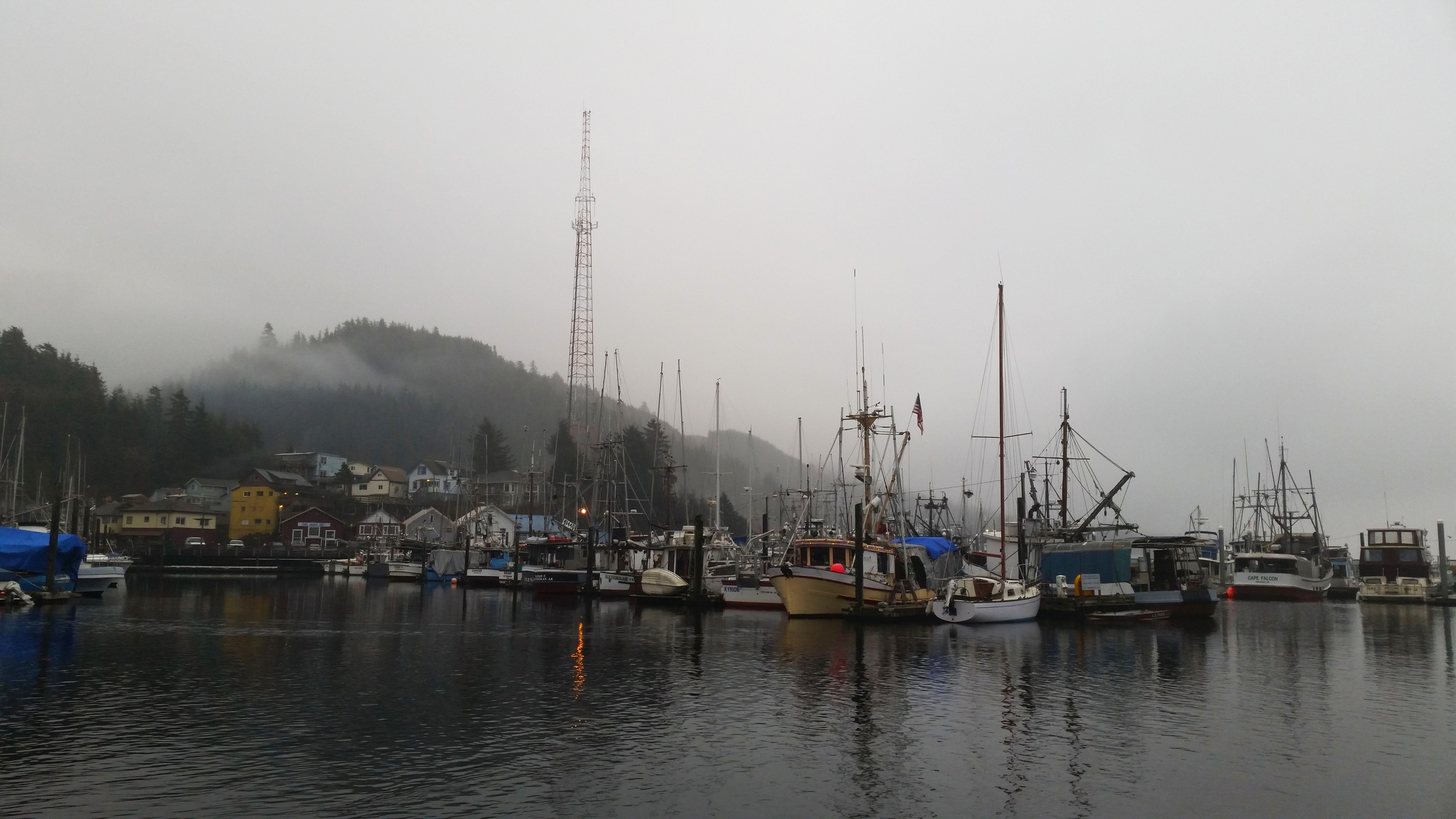 Deer Mountain disappears into the clouds on a misty day in Thomas Basin, Ketchikan, Alaska.