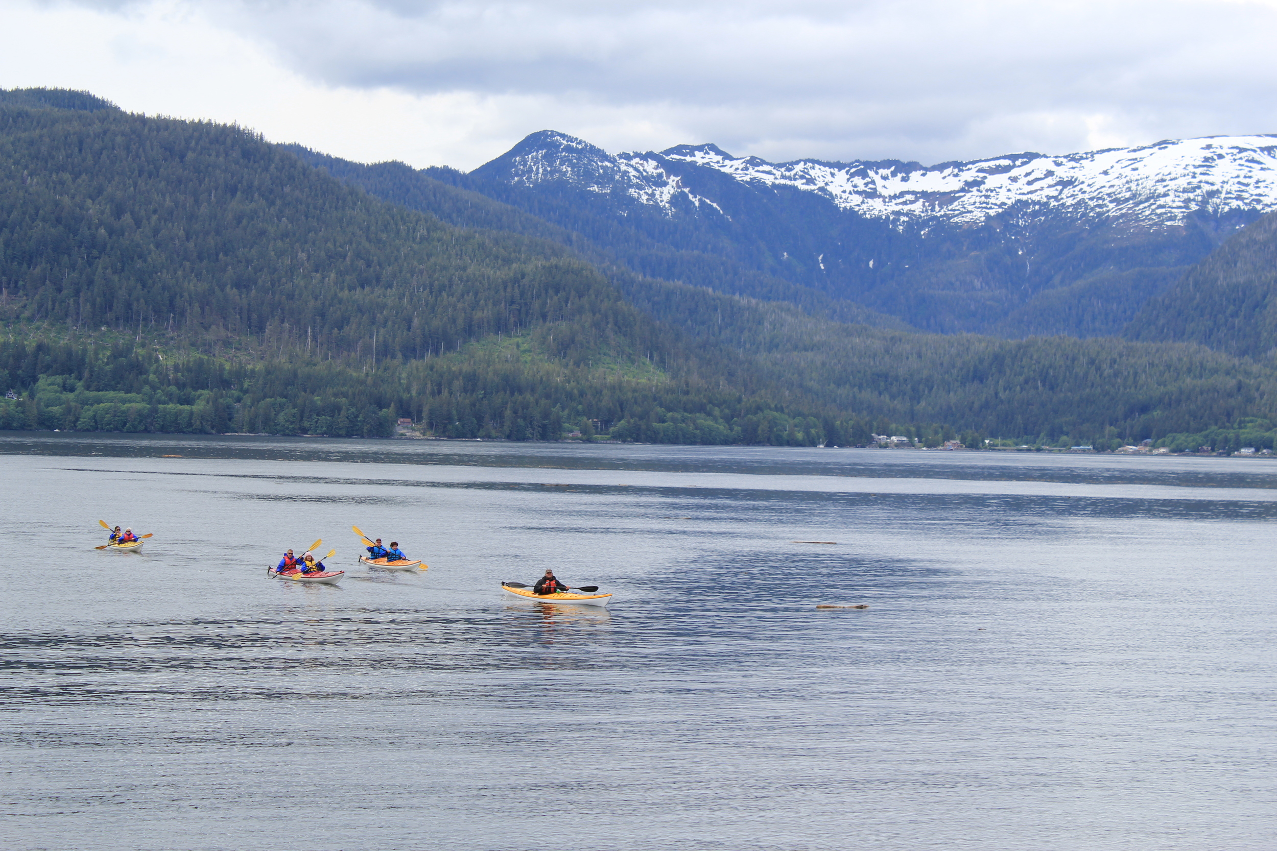 Master guide, Brandon, leads kayakers back into Orcas Cove in 2011.