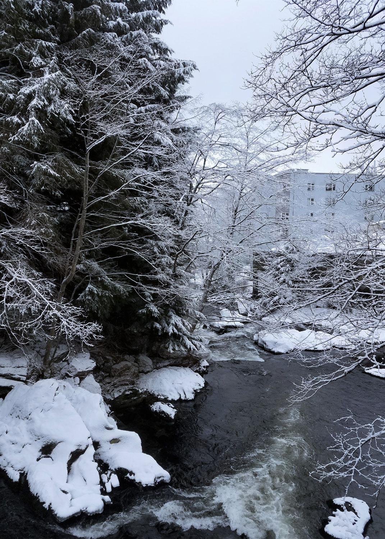 The Ketchikan Creek runs through the heart of downtown