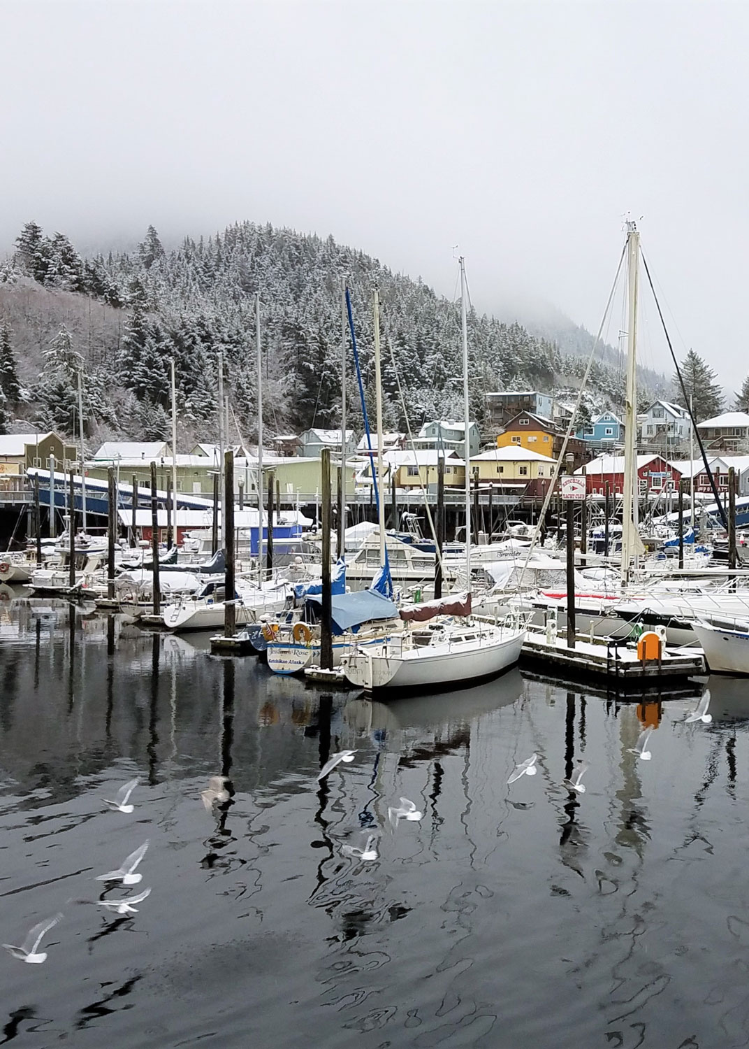 Always my favorite view of Ketchikan: Thomas Basin Boat Harbor and Deer Mountain hidden in the clouds above.