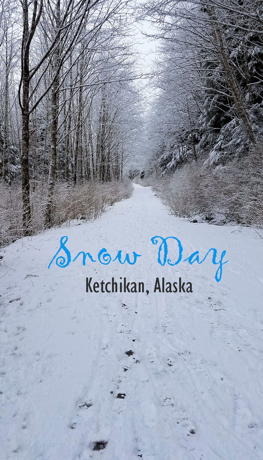 snow-day-in-ketchikan-alaska-photoblog