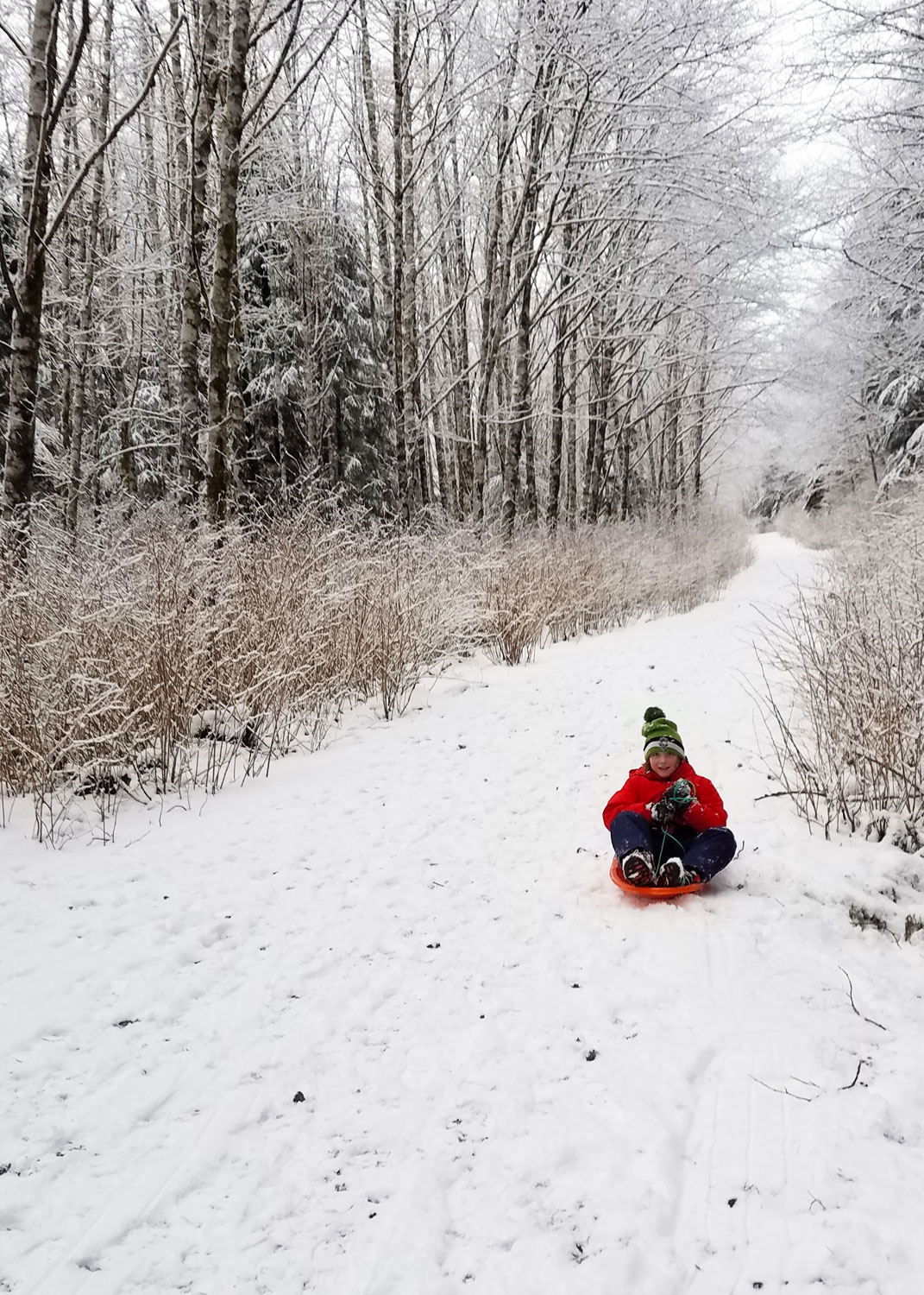The best thing about snowy days in Ketchikan? Sledding!