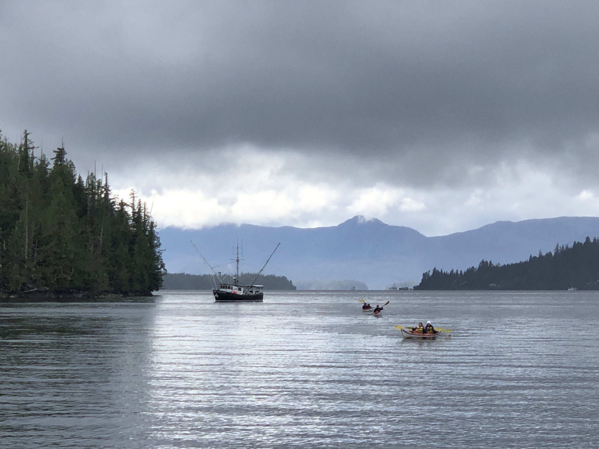 Orcas Cove paddlers coming back from around Carroll Point past a commercial salmon trolling boat.