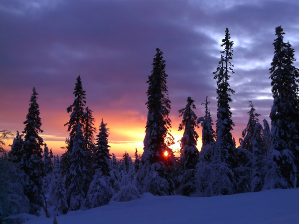 12-Winter-Sunset-dec_lg.jpg