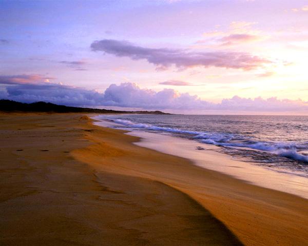 03-Sunrise-Shore-mar_lg.jpg